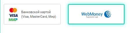 способ оплаты вебмани